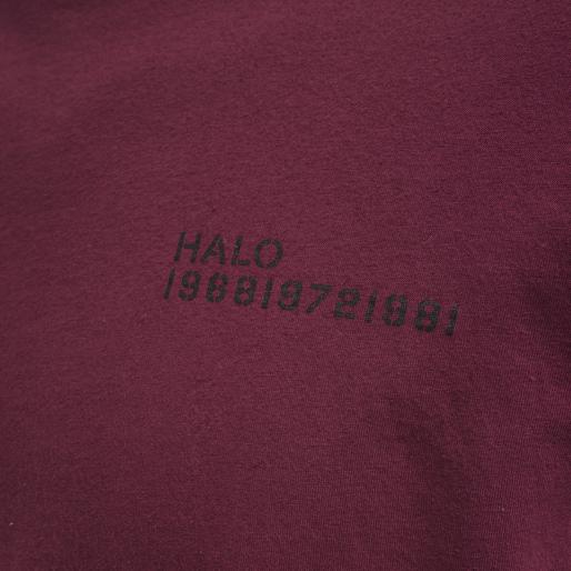 HALO COTTON TEE, BORDEAUX, packshot